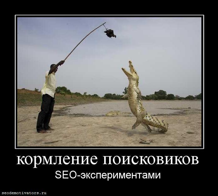 Кормление поисковиков