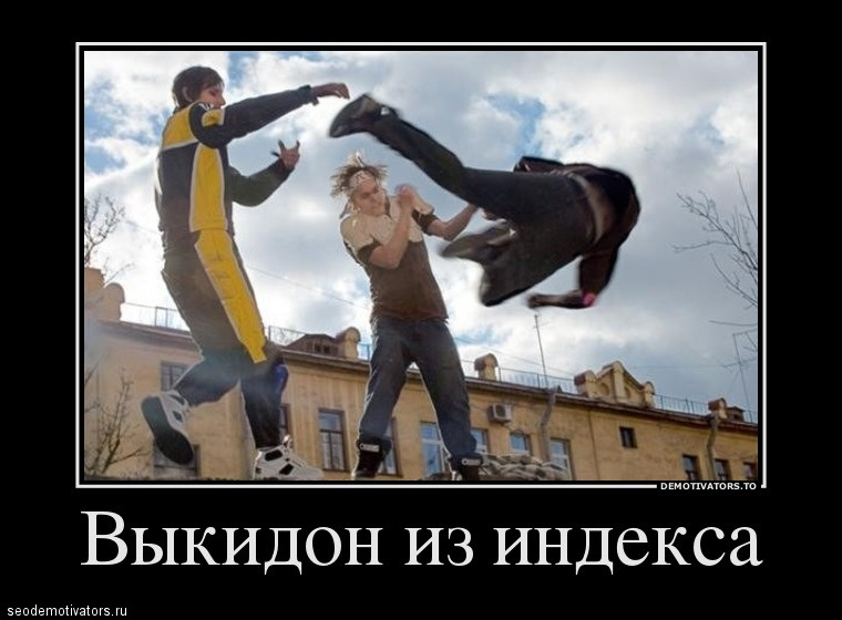 Выкидон из Яндекса