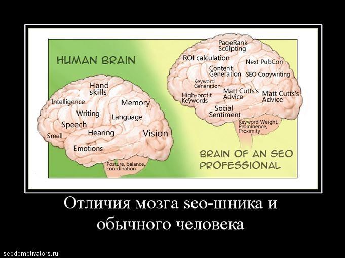 «Это череп Пушкина в 6 лет, а это — в 18!»