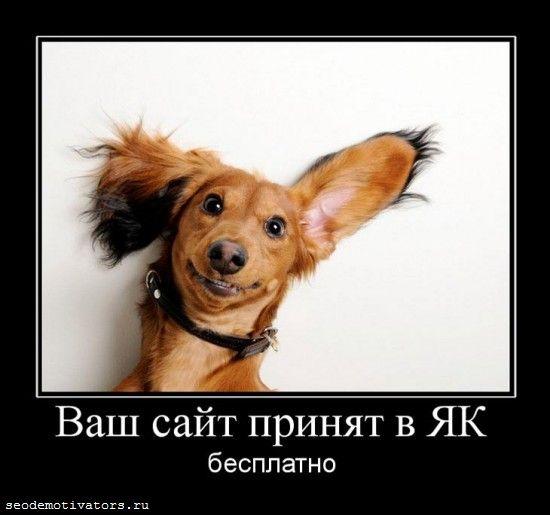 Яндекс.Каталог