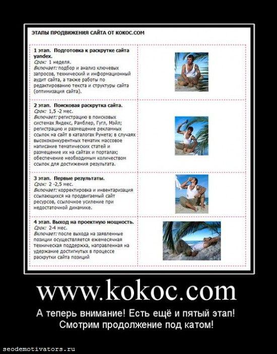 продвижение сайтов от кокоса, KOKOC.COM