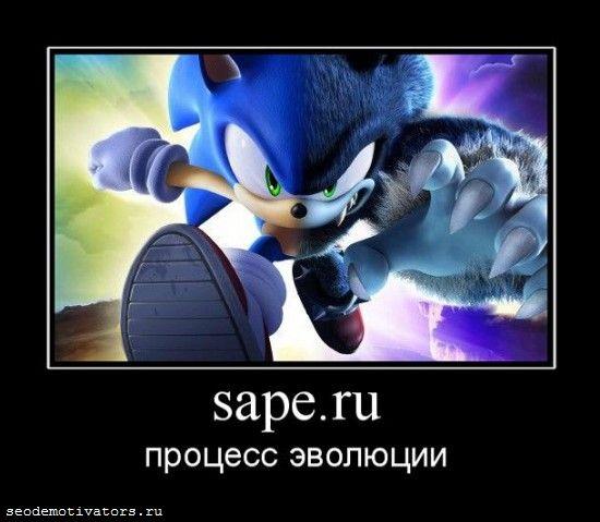 sape.ru, сапа, эволюция