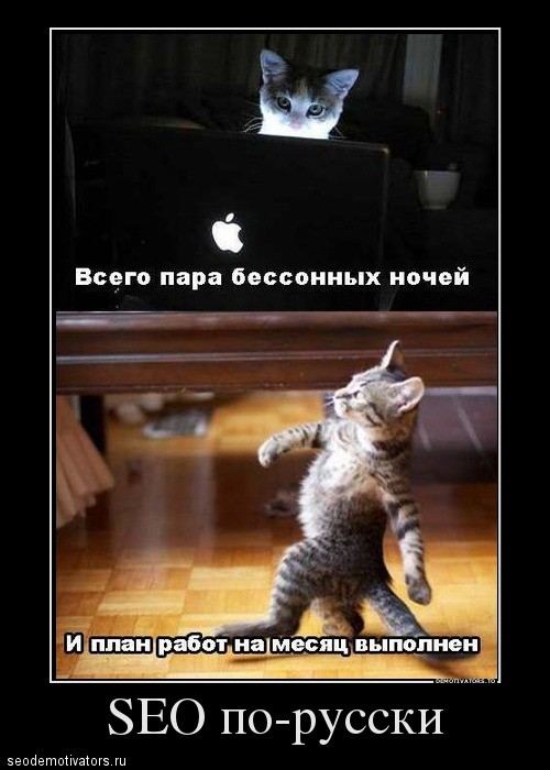 SEO по русски